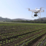 "DJI Co., Ltd., which handles consumer drones and related equipment, has announced the ""P4 MULTISPECTRAL"" drone for precision agriculture and land management."